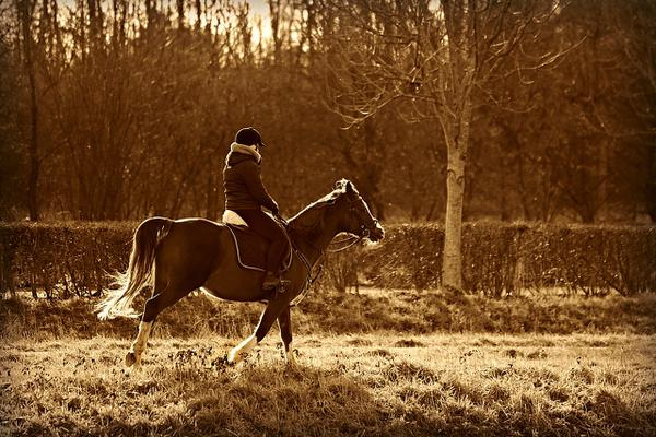 lekkie kaski jeździeckie
