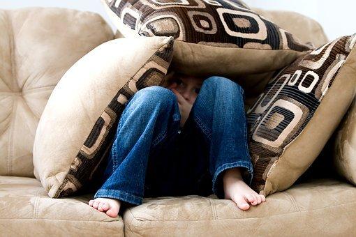 sympatyczny buldog francuski - poduszki